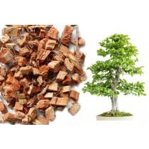 Kokos Chips lose - Bonsaisubstrat - 25 Liter Beutel