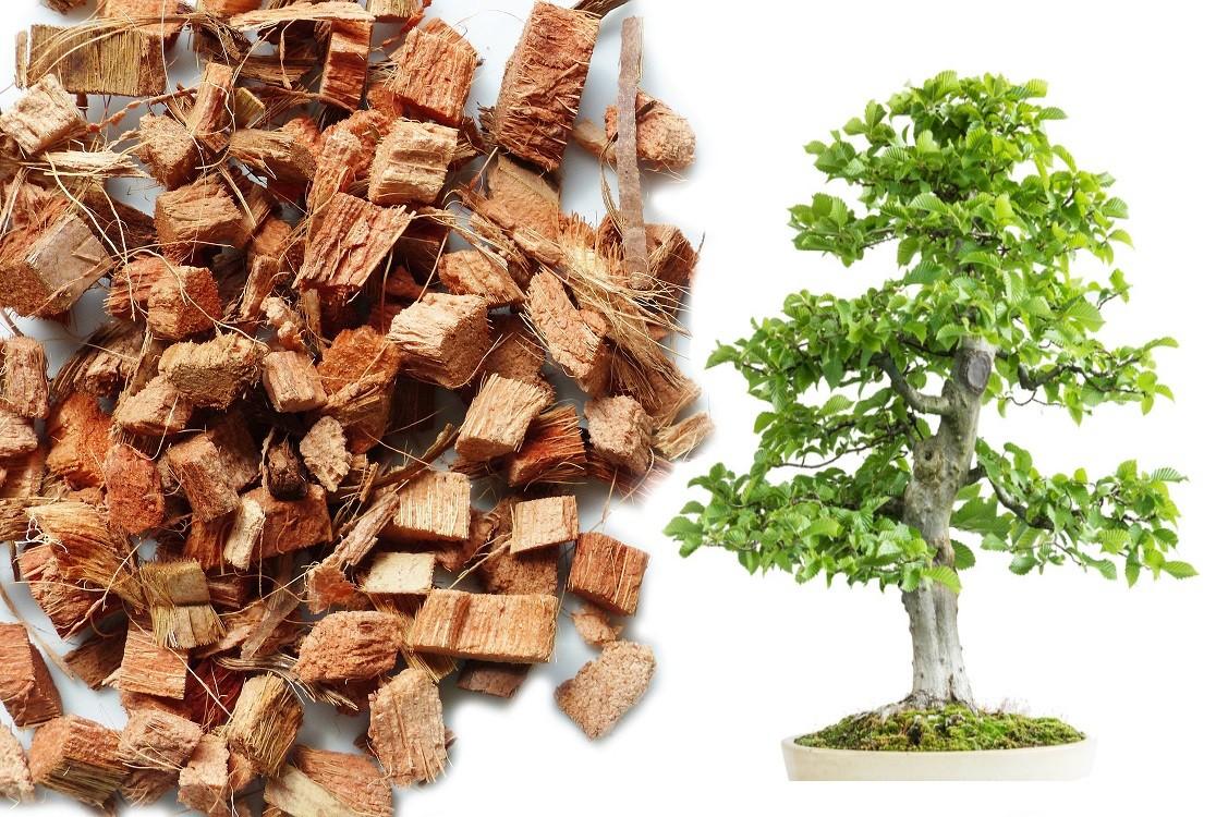 Kokos Chips lose - Bonsaisubstrat - 10 Liter Beutel