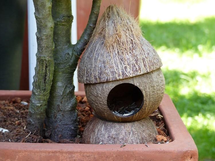 Vogelhaus aus Kokosnuss - stehend - Einzelstücke