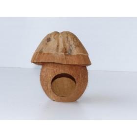 Kokos Reptilienhöhle / Reptiliengrotte