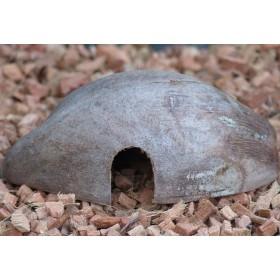 Reptilienhöhle - Nagerhöhle - 1/2 Kokosnuss mit Husk