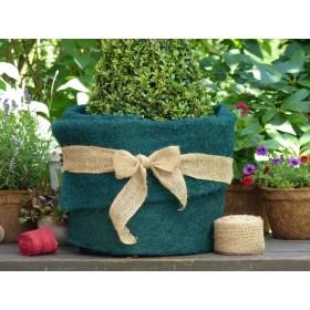 Kokosfaser Matte Winterschutz für Garten und Pflanzen - grün - 150 x 50 cm - Rolle