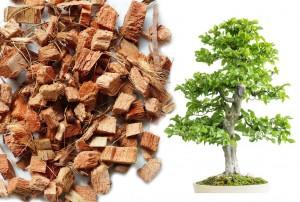 Kokos Chips lose - Bonsaisubstrat - 5 Liter Beutel