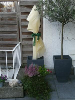 Vlieshaube für den Pflanzenschutz im Winter - 100 x 120 cm - 2 Stück